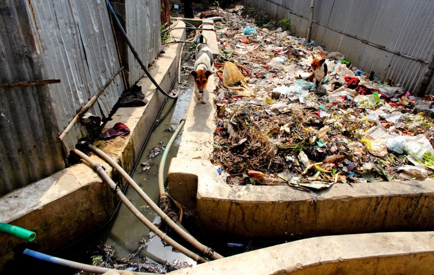 Solid waste in Mirpur, Dhaka