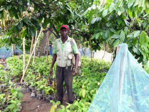 Cocoa farmer - Yaw Asiamah in his nursery