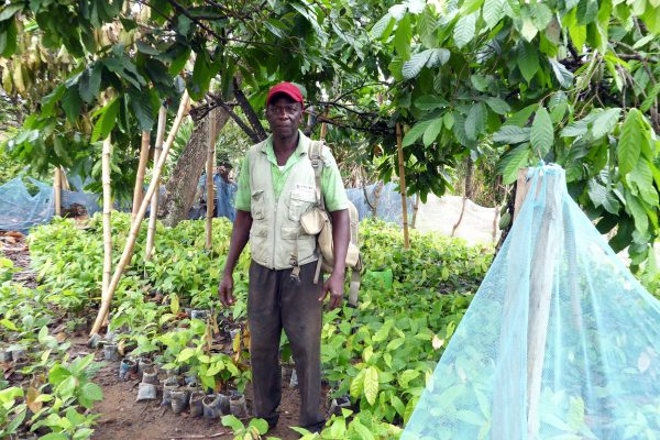 Cocoa farmer - Yaw Asiamah in his nursery