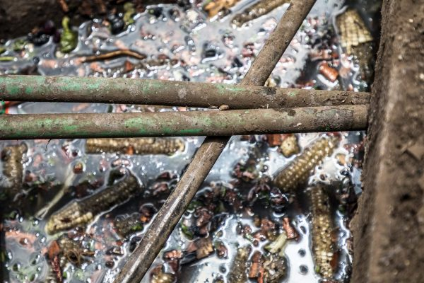 Water pipes and rubbish, Nairobi